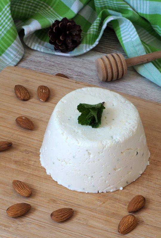 receta queso fresco casero