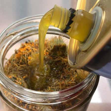 cubrir flores y hojas de arnica con aceite de oliva